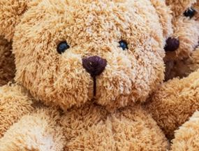 Teddy Bear Sleepover @ Nancy Kay Holmes Library | Scranton | Pennsylvania | United States