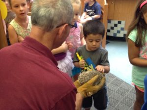 A visit from the Binghamton Zoo at Ross Park, July 30.