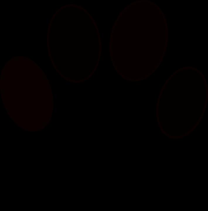 animal-1293792_960_720