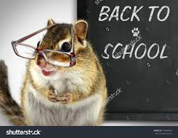 back-to-school-squirrel