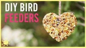 Make & Take: Bird Feeders @ North Pocono Public Library